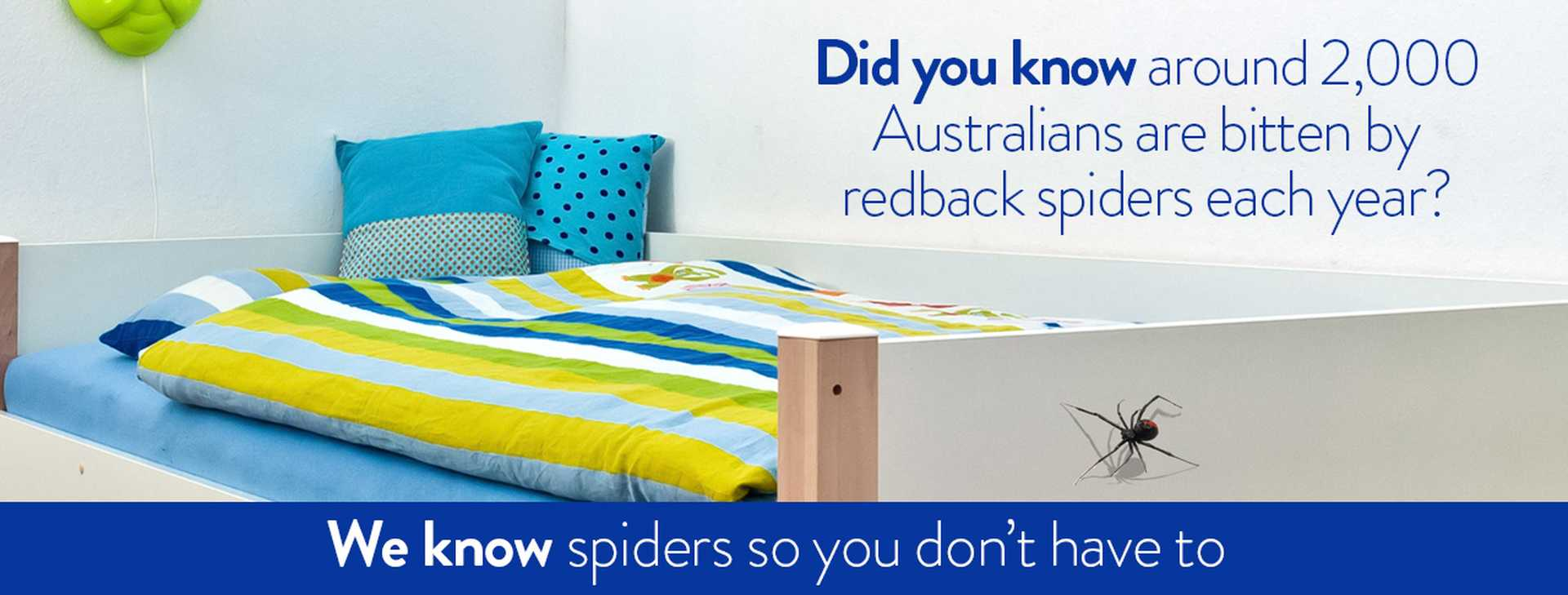 We know spiders so you don't have to.